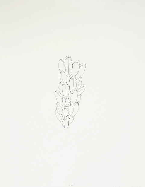 Seeds and Tracks, #4, 2012