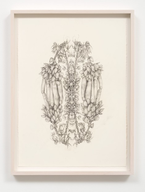 Aurel Schmidt Untitled (Rorschach Flowers 1) pencil, colored pencil on paper paper size: 20-1/2 x 15-1/4 inches framed size: 23...