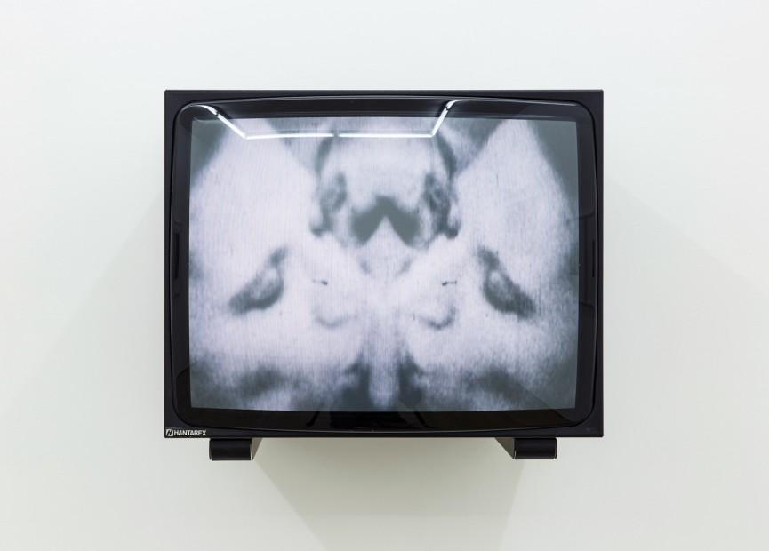 Paolo Gioli, Quando la pellicola è calda, 1974