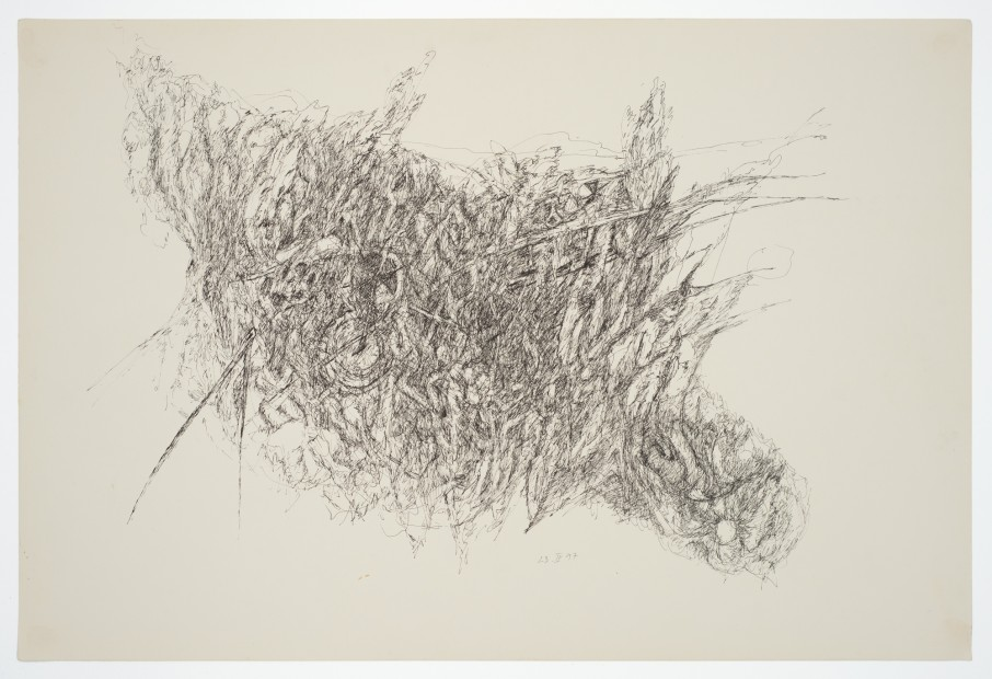 Margaret Raspé, Automatic Drawing 9, 1977