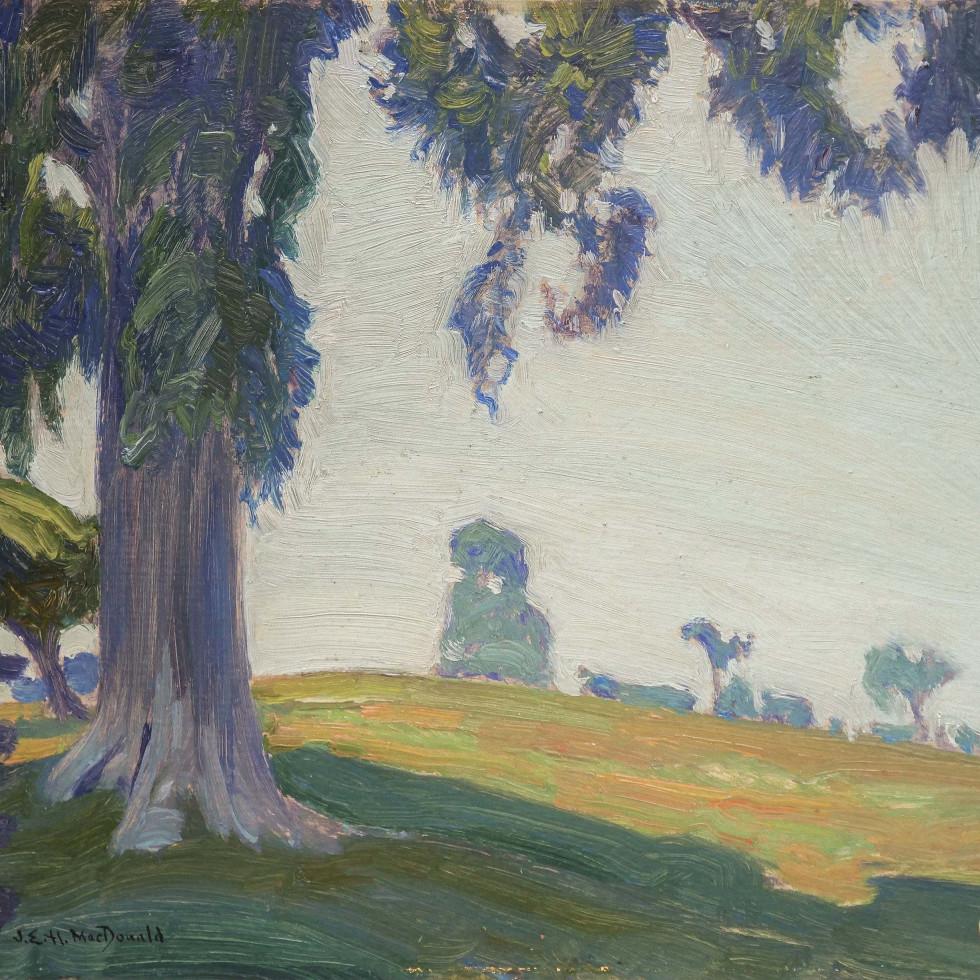 Pasture Elm, Thornhill -J.E.H. MacDonald
