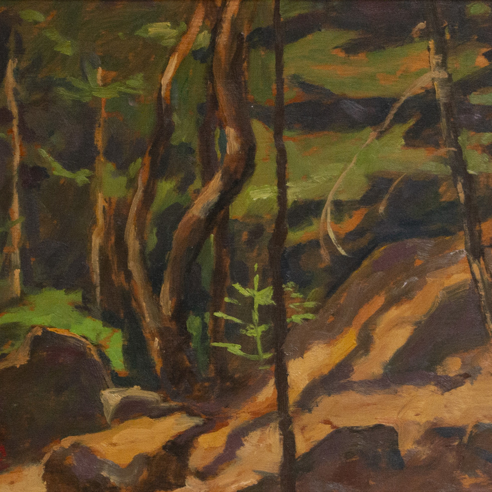 Thicket, Laurentians-Edwin Holgate