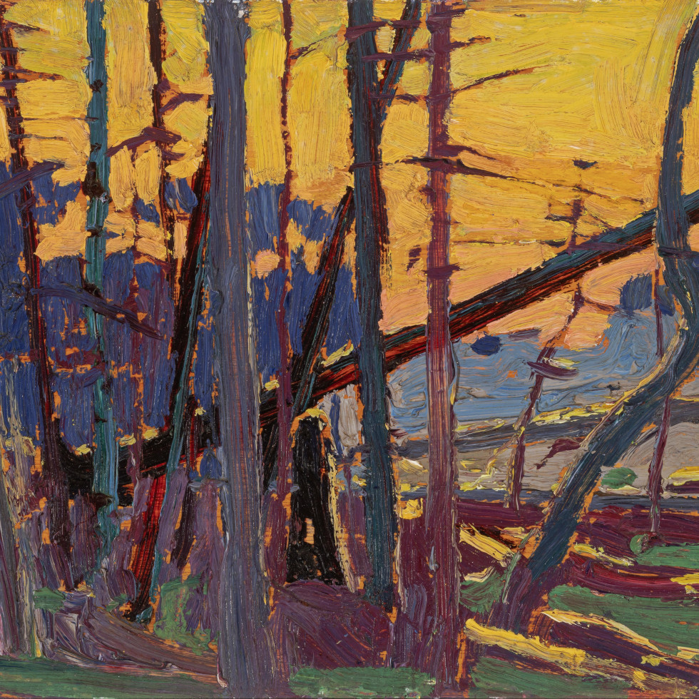 Tom Thomson's Algonquin Evening