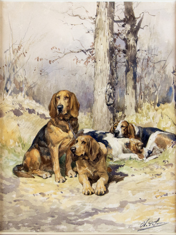 Charles-Olivier De Penne, Untitled (Resting Hunting Dogs)