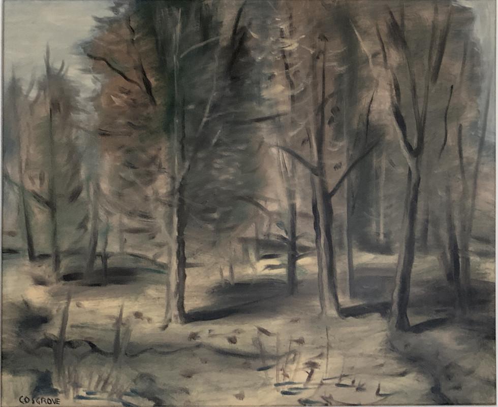 Stanley M. Cosgrove, Landscape
