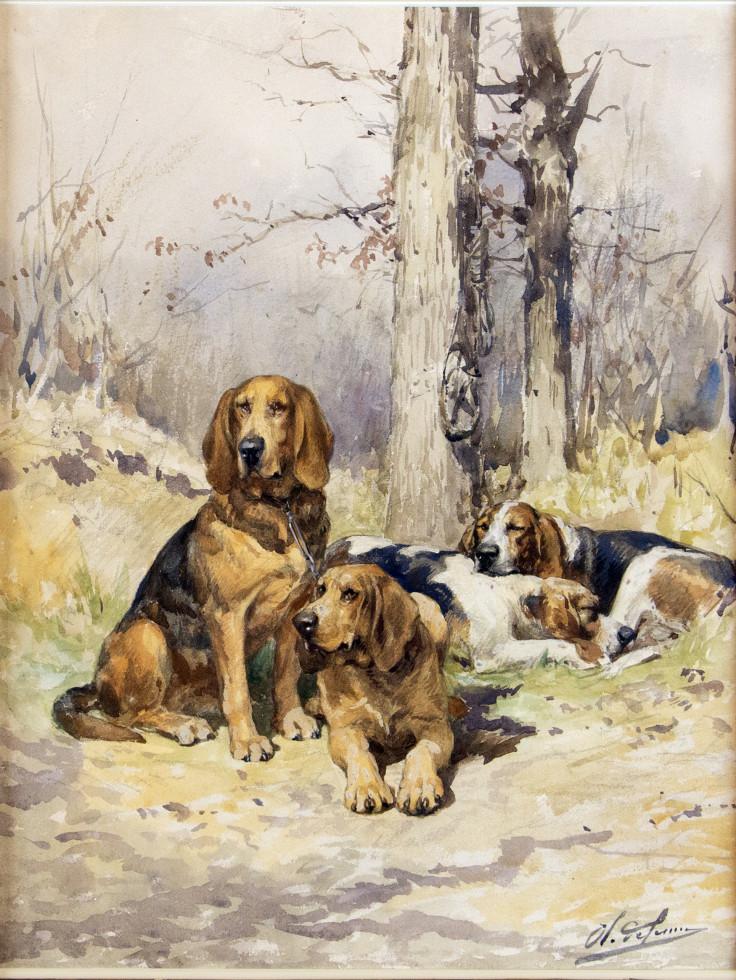 Charles-Olivier De Penne, Untitled (Resting Hunting Dogs)